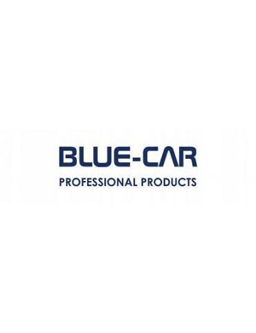 BLUE CAR MASA...